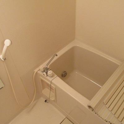 お風呂も十分な大きさでゆっくりできそうです。