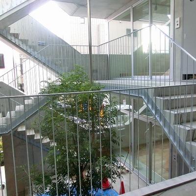 中庭の階段です。※画像は別室です