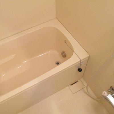 浴槽も十分な広さです