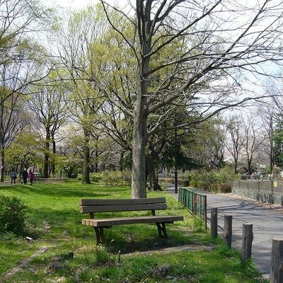 お隣の公園でのお散歩も楽しみですね