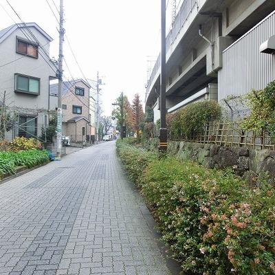 駅からお部屋までの道のりには緑道があります。