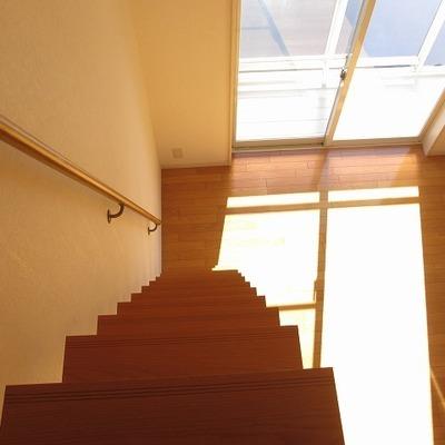 階段が急なのでお気をつけを!