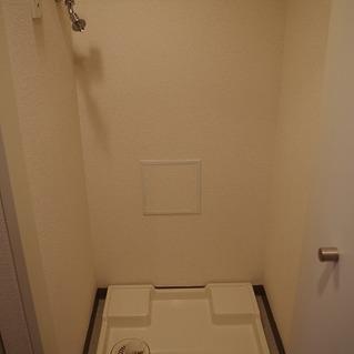 洗濯機置き場には扉がついています。