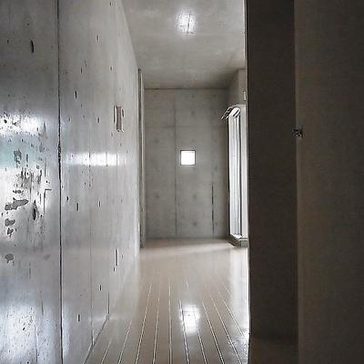 玄関開けると小さな光が