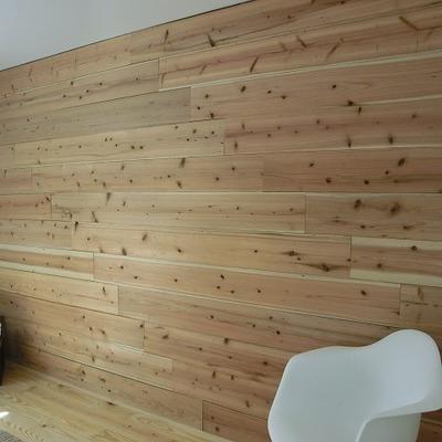 可愛いですね、この壁!※写真は別室