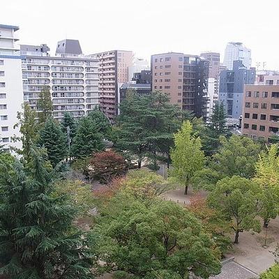 公園ビュー