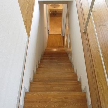 階段。なんかわくわくするぞ