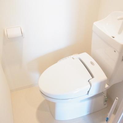 ここで手が洗えるタイプ