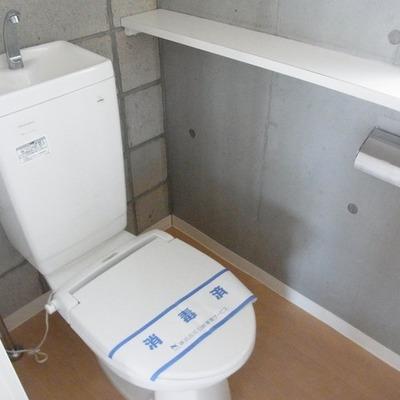 トイレのこの壁もやっぱり好き