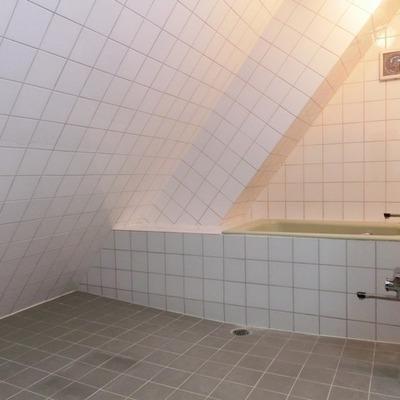 浴槽は小さいですが、お風呂のスペースはかなり広々です!まるで温泉のような。。