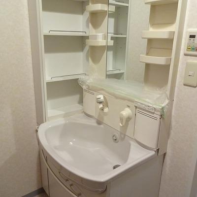 洗面台は割と普通