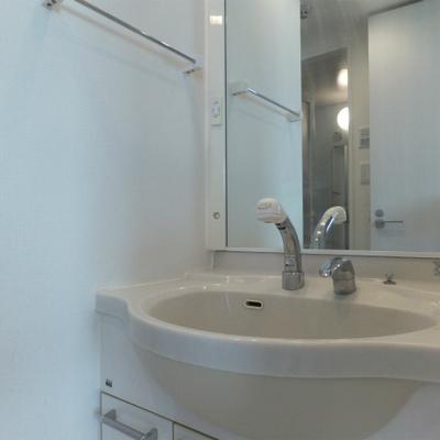 独立洗面台も広くて使いやすいのがうれしい。