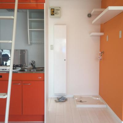 オレンジが元気!※写真は前回募集時のものです