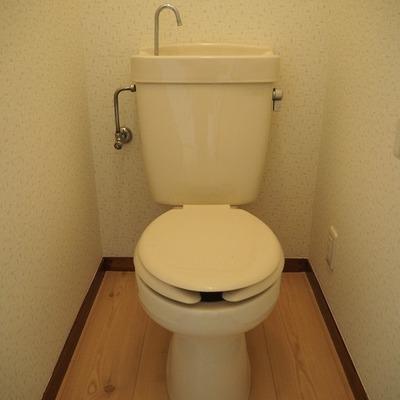 トイレ~!!!!