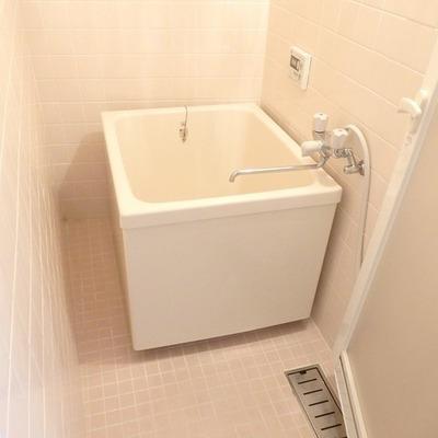 お風呂は謎の位置に浴槽が
