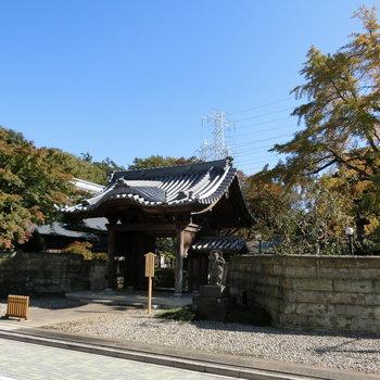 近くには、神社もありました。