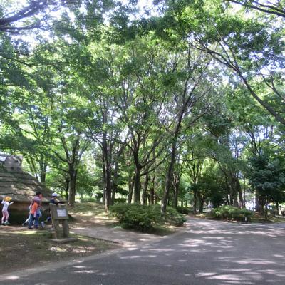 平和の森公園!!気持ちがいい。