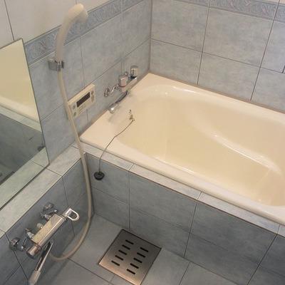 お風呂が豪華。優雅なバスタイムを楽しめそう。