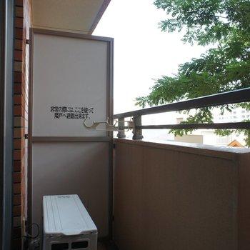 2階ですが、しっかり日の届くバルコニーです。