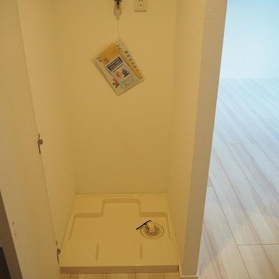 洗濯機置き場は扉で閉められます。