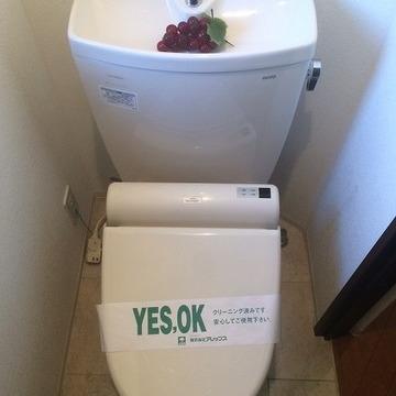 トイレぴかぴか