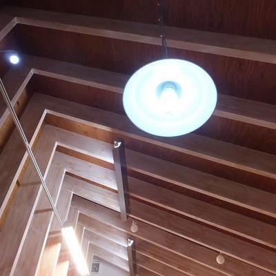 照明はいろんな種類のものが付いています。