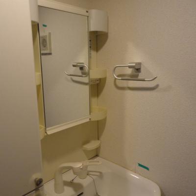 ハンドシャワー付き。