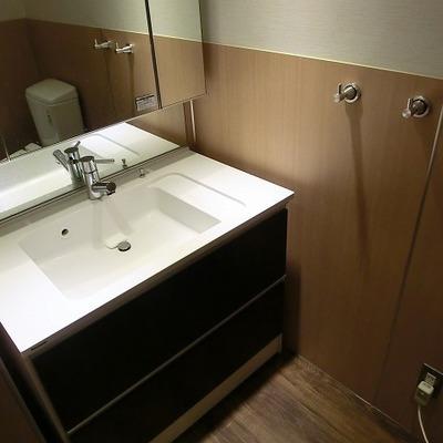 洗面台もきれいで、収納もあります