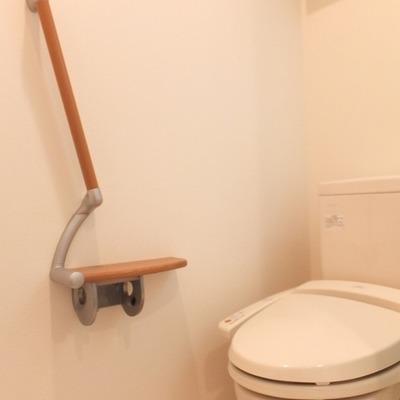 トイレ横の手すりがなんだか変わってます。