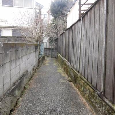 家の前の道です。