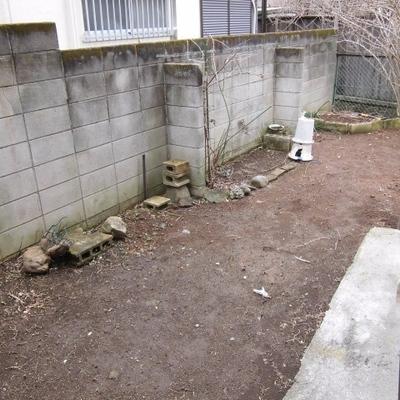 お部屋の前のお庭。