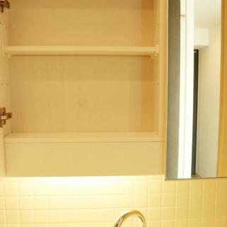 洗面台の鏡の裏には収納も!