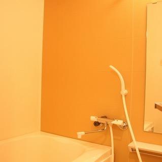 色が異なる壁が渋い浴室