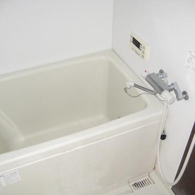 浴槽はこんな感じ。
