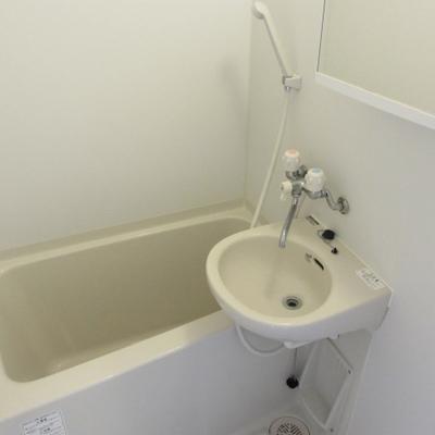 浴室は少々小さめ。