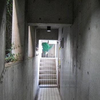 1F廊下、半地下に降りてから、また階段で上ります。