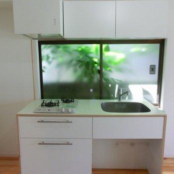 緑が映える二口ガスコンロのキッチンです!※前回募集時の写真です