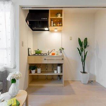 キッチン、洗濯機、冷蔵庫はカーテンで仕切れます!
