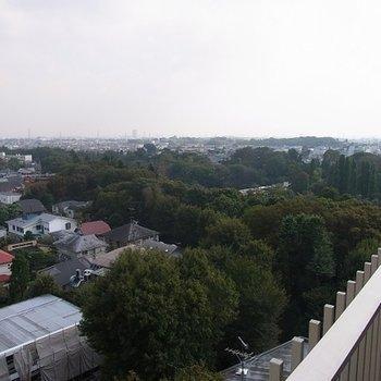 井の頭公園view