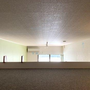 天井は低いので物置に〇