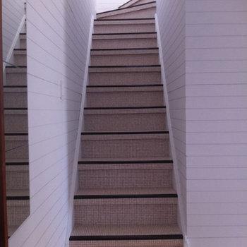 この階段の雰囲気、たまりません ※前回募集時の写真です