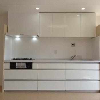 立派なキッチンです。絵になる。