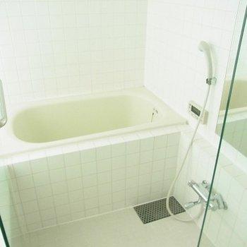 お風呂も丸見え~~※写真は別部屋です