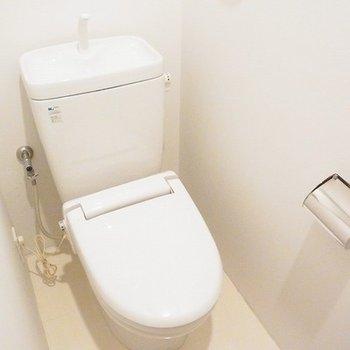 トイレは唯一ふつうです。※写真は別部屋です