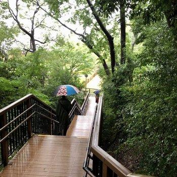 多摩川駅への道のりに公園があり、自然を感じられます。