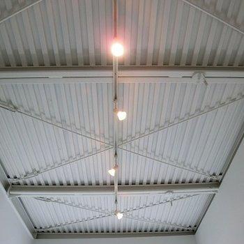 天井はこんな感じ。