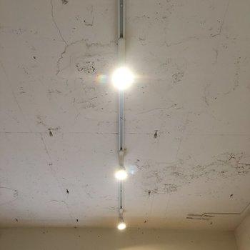 天井とライティングレールがいい味だしてる!