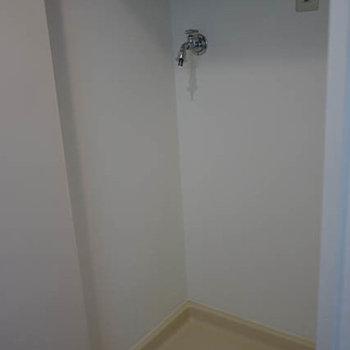 洗濯機置き場に扉があり、この前に物がおけません。