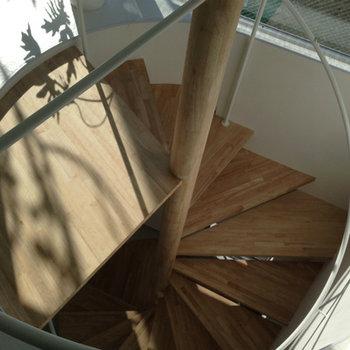 綺麗な木製螺旋階段に惚れ惚れ。