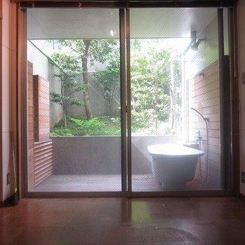 お風呂の見えるお部屋。気持ちよさそう!今すぐにでも入りたい!